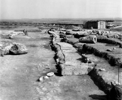 La necropoli di Mont'e Prama in corso di scavo nel 1979.